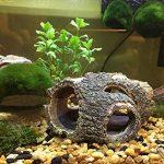 Hygger RéSine pour DéCoration Fish Tank , RéSine Naufrage Bois Aquarium Grotte Aquarium Decoration Cave Artificielles en pour Aquarium Ornements DéCor Accueil Jardin Plantes de Jardin