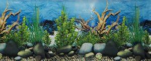 Pistache Pet Poster Double Face pour Fond d'aquarium 48x100cm