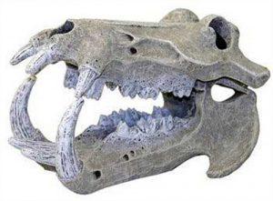Rosewood Décor pour Aquarium Crâne d'Hippopotame Grand