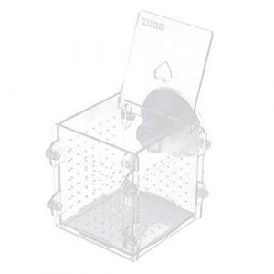 Sharplace Boîte de Reproduction Aquarium Pondoir Isoloir Protection pour œuf de Poisson Ornement Aquarium – Carré