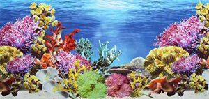Poster double face Pistachio Pet avec arrière plan d'aquarium 45 x 100cm