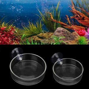 SENZEAL 2pcs Ronde Gamelles en Verre avec Ventouse pour Crevette Poisson Abreuvoir Eau Nourriture Reptiles Déco Aquarium Accueil Cuisine