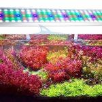 RGB Aquarium LED Illuminator avec Fixation de Couverture de Couleur Réglable Blanc Bleu Rouge Poissons et Plantes Réservoir Aquarium Light Aquarium Plante Aquarium Bubble Light pour Aquarium
