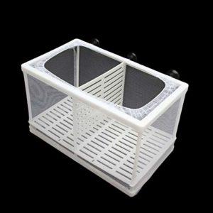 SENZEAL Poissons d'aquarium Filet de Sélection Isolation de Poissons Éleveur Couveuse Incubateur Maille pour Fish Tank Bébé Poisson avec 3pcs Pipette – Grand