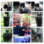 Decdeal Éponge à Air Filtré d'aquarium Filtres pour Aquarium Éponge Biochimique Filtration Ultra Silencieuse Aération Pompe à Air