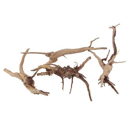 Emours Branches de bois flotté naturel pour décoration de vivarium Petite taille 4pièces