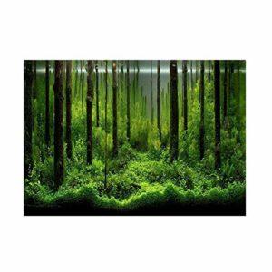 Jadeshay Affiche de réservoir de Poissons – Fond de réservoir de forêt sous-Marine adhésive Affiche décoration de Toile de Fond(91 * 50cm)
