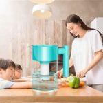 Osmlvjj Eau alcaline Vie Jug Filtres Eau alcaline Filtre Purificateur de Filtration d'eau Pichet Système, 3 L Carafe brita (Color : Blue)
