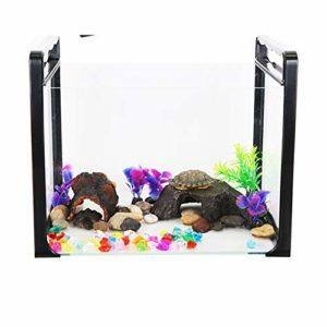 Petit aquarium en verre – un aquarium qui peut nourrir les poissons et les tortues sur la table.