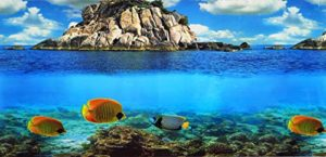 PistachioPet Poster double face pour toile de fond d'aquarium 45x 100cm
