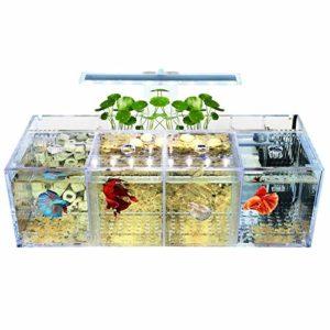 REFURBISHHOUSE Aquarium LED Acrylique Betta Ensemble de L'Aquarium Pompe à Eau de Bureau Filtres-Quadruple