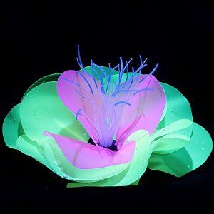 Roblue Plantes Simulées Herbe sous-Marine Artificiel Fluorescence Décoration pour Aquarium Fish Tank en Silicone 16 * 7.5cm