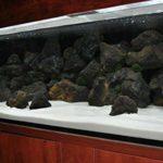 TM Aquatix Pierre d'aquarium la Roche Naturel Décoration Lave Volcanique (25kg, Noir)