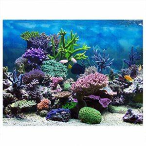 Affiche Aquarium Fond PVC Adhésif sous-Marin Récif de Corail Décor Papier Collant Stickers Autocollant(76 * 46cm)