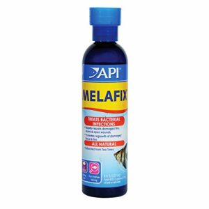 API Melafix Poisson d'eau Douce infections Bactériennes Remedy