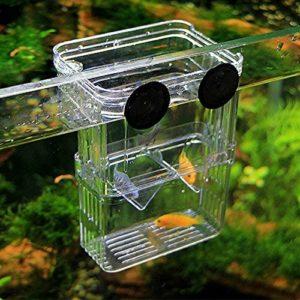 LYX Fashionclus pondoir élevage Aquarium Piège à Boîte pour Aquarium
