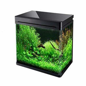Poisson réservoir de tortue réservoir d'eau chaude en verre bombé petit réservoir de poisson rouge eau et aménagement paysager de l'eau cylindre Convient pour un salon dans l'océan ou l'aquarium tropi