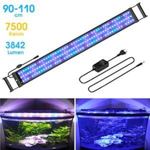 BELLALICHT Rampe LED pour Aquarium Éclairage Aquarium LED 31W 2 Mode RGBW Lumieres Lampe LED pour 90-110CM Aquarium – 7500K