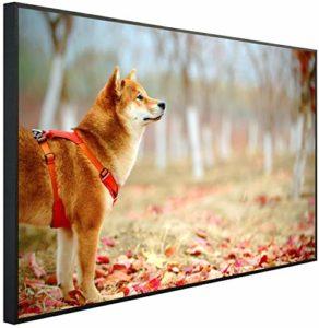 Chauffage infrarouge Ecowelle avec image – 600 W – 60 x 100 cm – Chauffage infrarouge – Fabriqué en Allemagne B 98 Chien