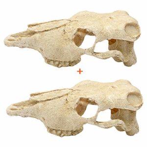 2 pièces Crâne Aquarium Ornements chèvres Moutons crâne Vivarium Reptiles décoration Aquarium Ornement réservoir Lizard Cave