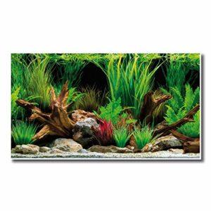 AMTRA WONDER, Fond Aquarium Double, Décoration Aquarium, Poster décoratif Impression Double, Format 45x100cm
