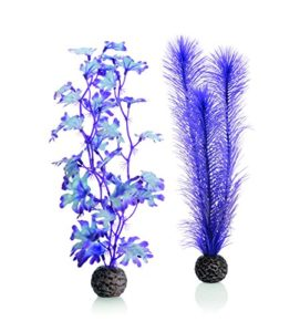 biOrb Plante colorée violette Moyenne pour Aquarium