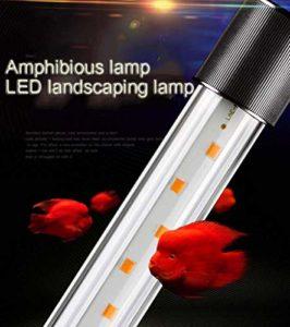 CanKun Eclairage Aquarium LED, Rampe LED pour Aquarium d'eau Douce, Lumière Aquarium Plantes, 3 Modes Lampe LED pour Aquarium,Blanc,60cm
