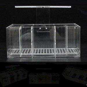 DFGHJ Aquarium LED Acrylique Fish Tank Set Mini Desktop Light Pompe À Eau Filtres-Triple 3