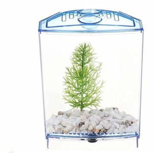 DFGHJ LED Light Triple Cube Betta Aquarium Box Élevage Séparé Fraye Fish-Breeding-Box Isolation-Box Plants Aquarium Fish Tank 1gridwithoutlight