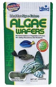Hikari 21328Tropical Algues comestible 250gram
