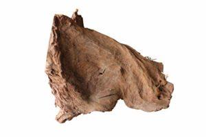 Kingston Tools – Décoration tropicale malaisienne en bois Mopani pour aquarium et terrarium – Décoration tropicale naturelle et non toxique – Bicolore – Tailles assorties