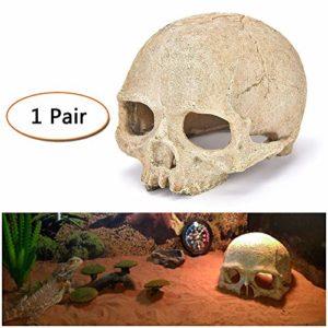 LUCKFY Poissons Décoration réservoir Reptile Hideout Skull Aquarium Reptile Maison Résine Crâne Famille Cave Daily Décoration (2 pièces)