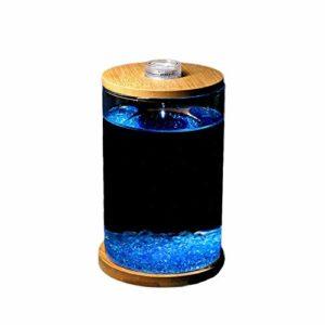 Mini aquarium cubique créatif avec veilleuse de nuit, aquarium de bureau pour poissons rouges et autres petits poissons, très approprié pour bureau, salon, table basse, décoration de bureau